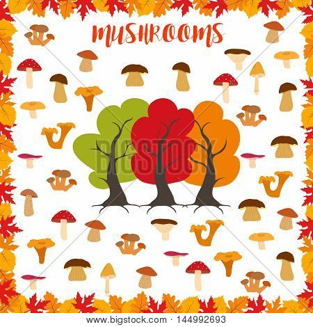 Mushrooms, autumn pattern, frame made of leaves, autumn trees and mushrooms. Vector illustration.