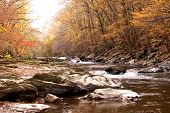picture of gatlinburg  - Autumn Stream in the mountains near Gatlinburg Tennessee