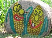 Two 'Corny' Guys