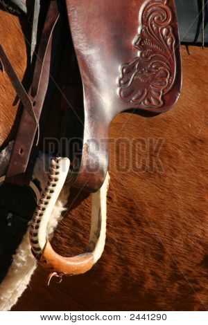 Brown Horse Stirrup Close Up