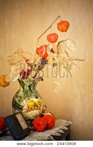 Flowers Of Physalis