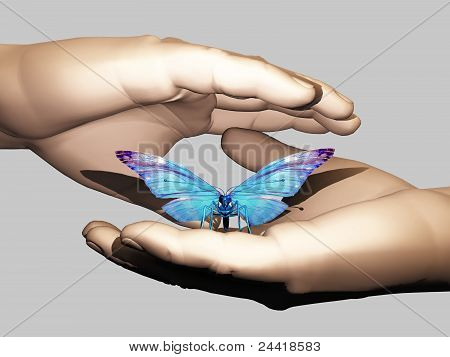 the butterfly in the hand