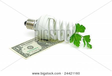 One U.s. Dollar, Energy-saving Light Bulb And Green Plant