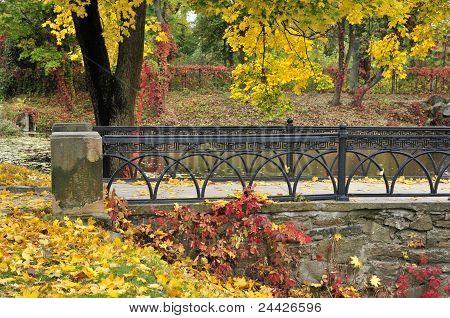 Autumn maple, arched bridge.