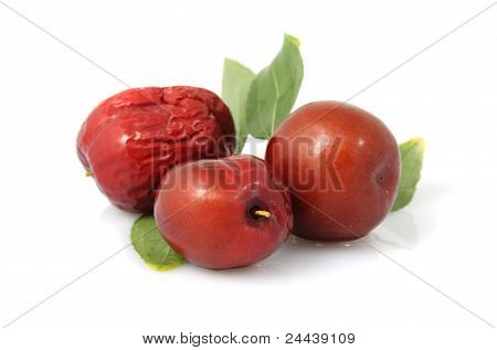 Red Date - Jujube Fruit - /fructus Jujubae