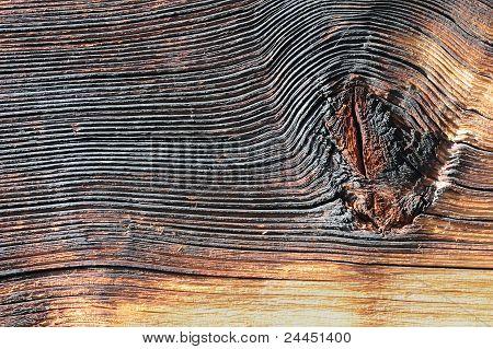 Pine Wood Detail