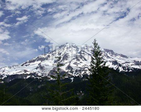 Mt Rainier - Early Summer