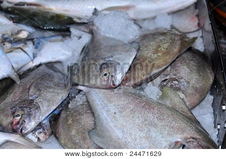 raw sea fish selling in the market