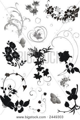 Different Floral Elements