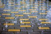 Rain In  City. Wet Paving Tiles In Rainy Weather. Splashes Of Rain poster