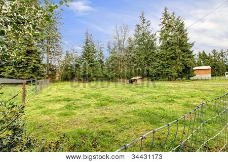 Large Horse Pasture With Shed During Spring.