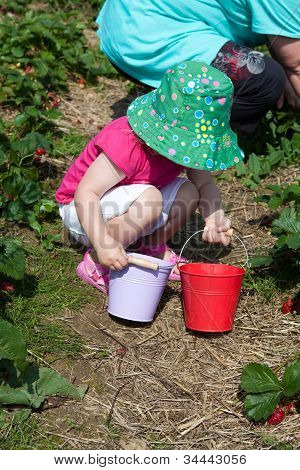 Little Girl On The Strawberry Field