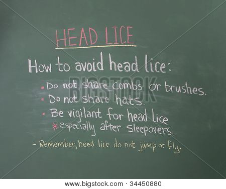 Head Lice Information On Chalkboard