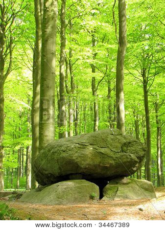 Stone dolmen in green beechforest