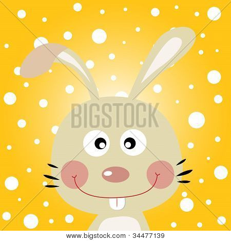 Rabbit with snowy background