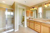 Постер, плакат: Красивая классическая Ванная комната с двойной раковиной и душем