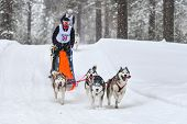 Siberian Husky Sled Dog Racing. Mushing Winter Competition. Husky Sled Dogs In Harness Pull A Sled W poster