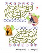 Learn French. Logic Puzzle Game With Cute Animals For Study French Language. Find Correct Places For poster