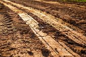 Wheel Track On Wet Soil Or Mud poster