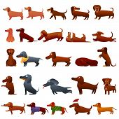 Dachshund Icons Set. Cartoon Set Of Dachshund Vector Icons For Web Design poster