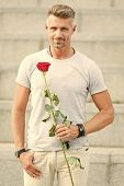 Little Romance Can Enhance Your Love Life. Handsome Guy With Rose Flower Romantic Date. Valentines D poster