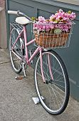 Vintage Pink Bicycle With Pink Flowers