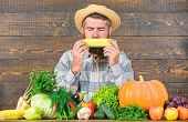 Community Gardens And Farms. Healthy Lifestyle. Farmer Hold Corncob Or Maize Wooden Background. Farm poster