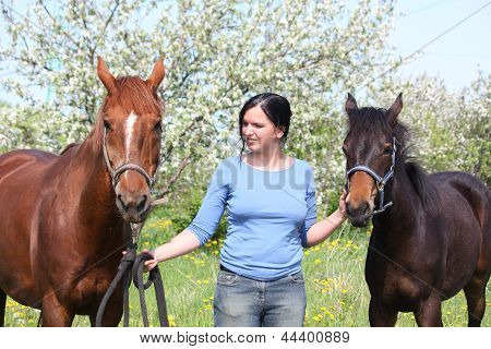 Woman And Chestnut Mare With Foal