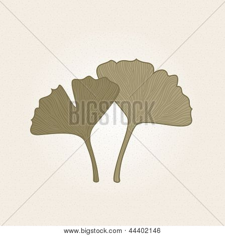 Retro Hand Drawn Gingko Leaves Isolated On Brown Background