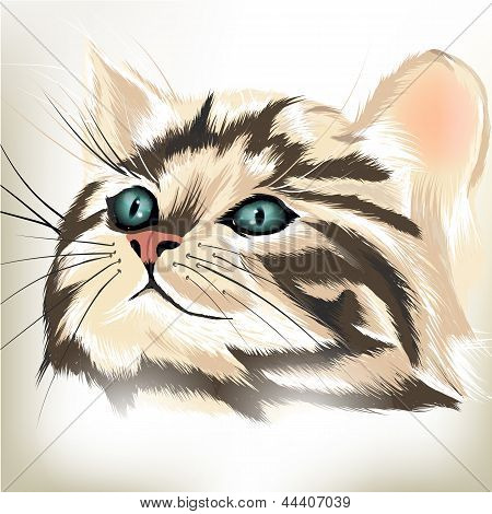 Art Vector  Portrait Of Cute Striped Cat With Big Blue Eyes