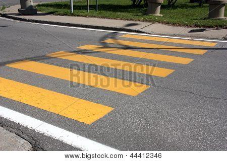crosswalk line on street