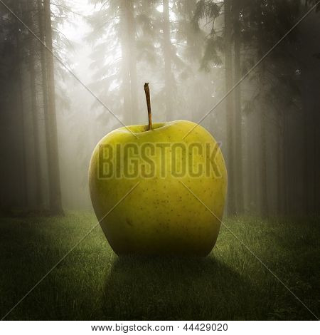 Big Apple In The Forest