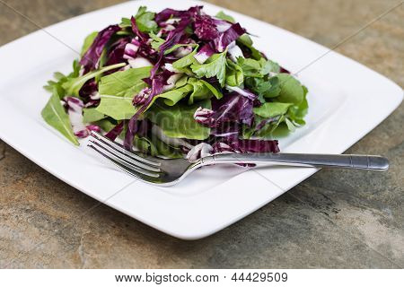 Closeup View Of Fresh Salad On White Plate
