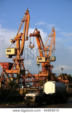 Photo of Cranes in the harbour