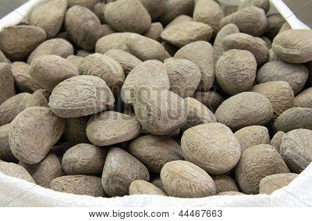 Sack Of Buah Keluak Nuts
