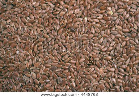 Closeup View Of Flix Seeds - Background