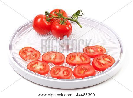 Ripe Tomato On Food Dehydrator Tray