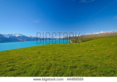 White Capped Peak Across An Alpine Meadow