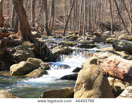 Rivers of Shenandoah