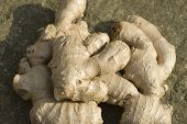 stock photo of zingiber  - Close up on a pile of root ginger - JPG
