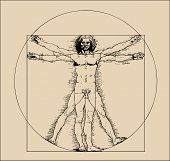 foto of leonardo da vinci  - A highly stylized drawing of vitruvian man with crosshatching and sepia tones - JPG