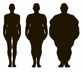 stock photo of anorexic  - Vector women silhouettes from thin to fat - JPG