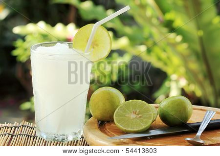 Lemon Lime Juice Smoothie
