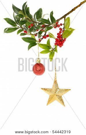Holly Gold Star And Bauble