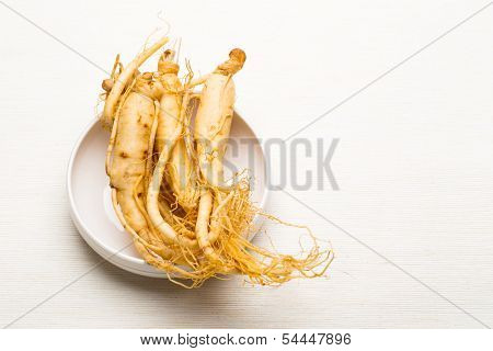 Fresh Ginseng sticks