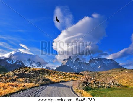 National Park Torres del Paine in southern Chile. A dirt road leads to the distant mountains. A huge cloud in the form of a burning candle flies away. Above the valley flying flock of Andean condors