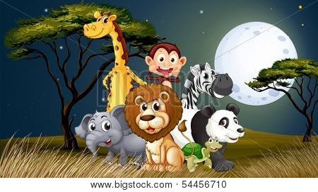 Illustration of a group of playful animals under the bright full moon