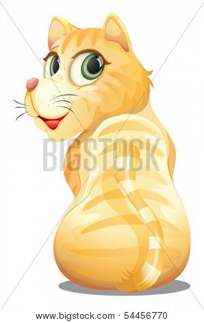 Illustration of a back view of an orange cat on a white background