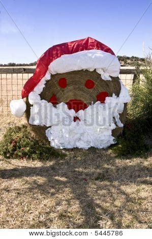 Santa Hay