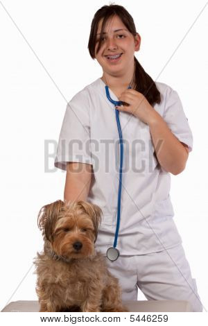 Animal Care Giver